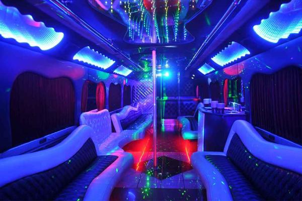 18 Person Party Bus Rental Boise